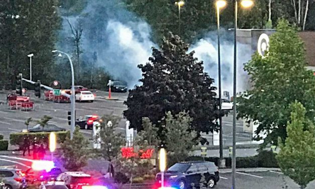 Multiple businesses damaged in Tukwila looting rampage Sunday night